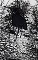Bassein Fort: Window