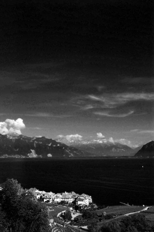 Montreux In Black & White